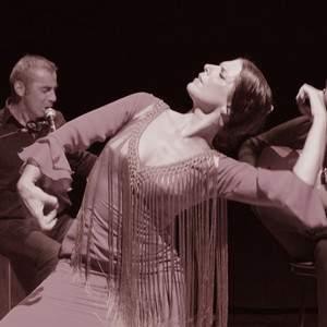 cours et stages de flamenco