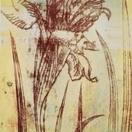 Monotype et gravure en relief