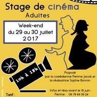 Stage cinéma adulte