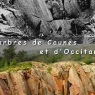 Exposition Marbre de Caunes Minervois et d'Occitanie